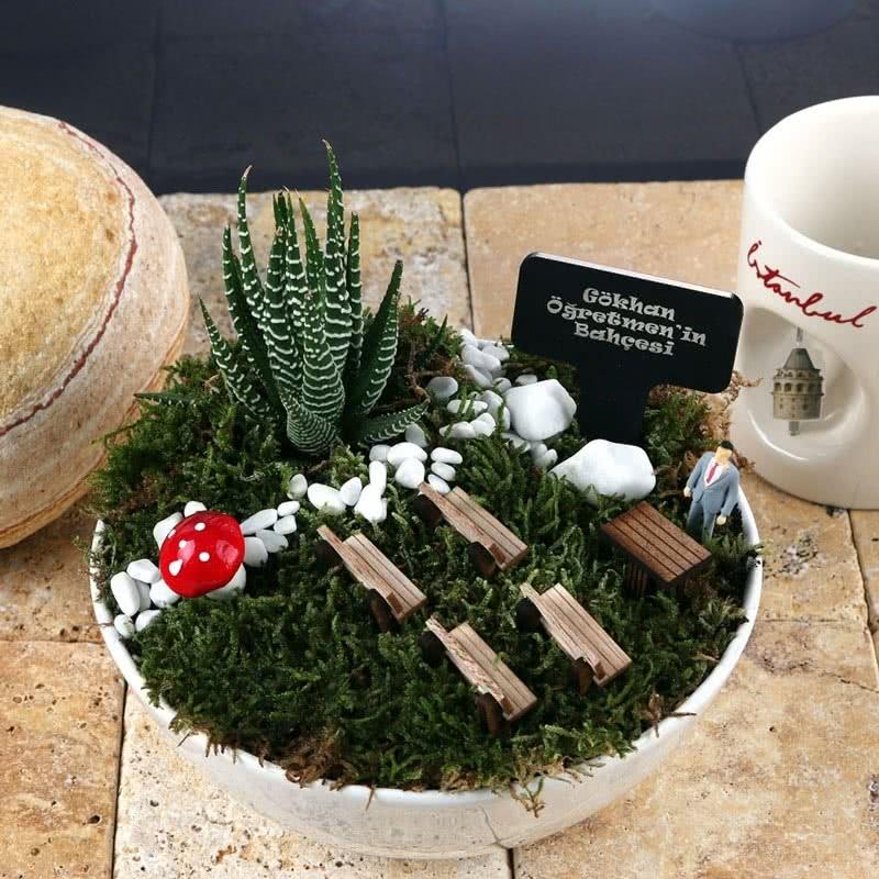 Erkek Öğretmene Hediye Canlı Minyatür Bahçe