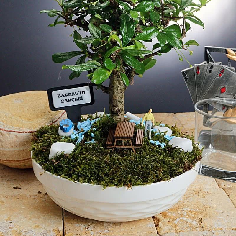 Kişiye Özel Canlı Minyatür Bahçe
