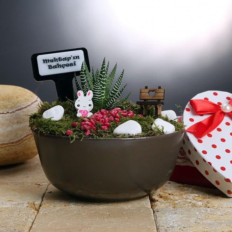 Kişiye Özel Canlı Bitki Minyatür Bahçe