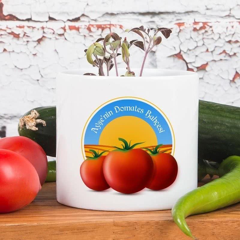 Kişiye Özel Seramik Saksılı Organik Cherry Domates