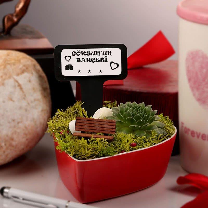 Mini Kalp Saksıda Hediyelik Bahçe