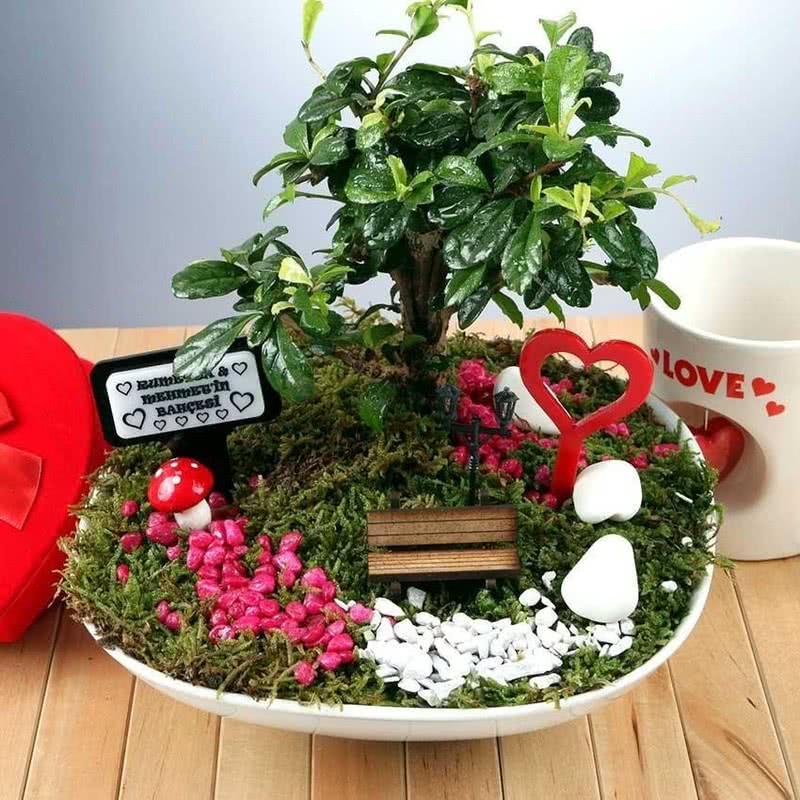 Sevgiliye hediye Özel Canlı Minyatür Bahçe
