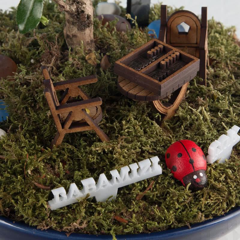 Babalar Günü Hediyesi Canlı Minyatür Bahçe