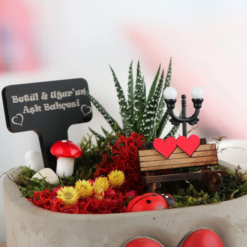 Kalp Saksılı Minyatür Sukulent Bahçesi