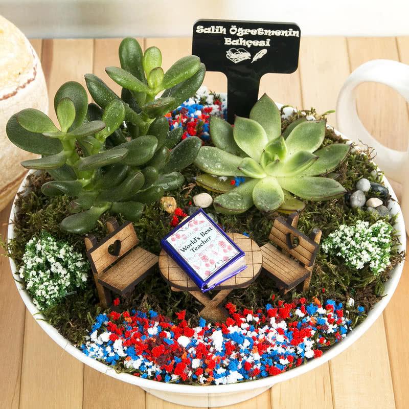Öğretmene Hediye El yapımı Canlı Minyatür Bahçe