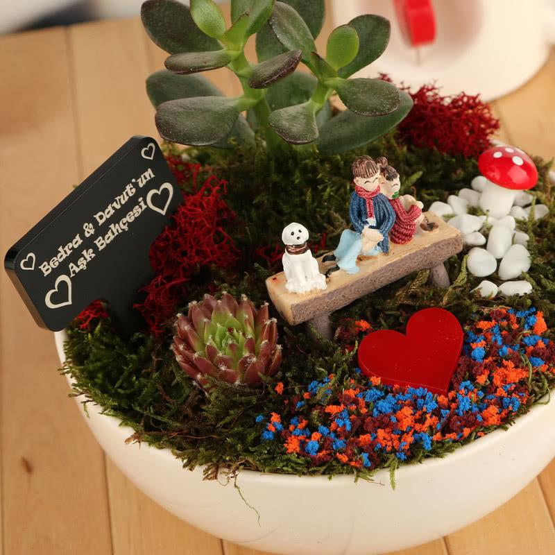 Romantik Aşıklara Özel Canlı Bitki Sukulent Bahçesi