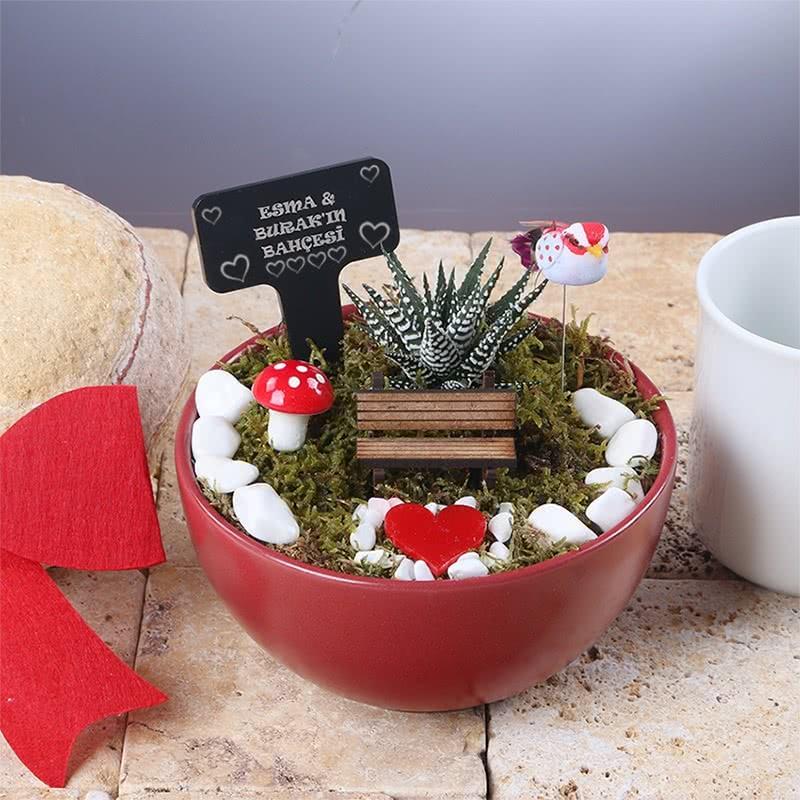 Sevgililer Günü Hediyesi Sukulent Bahçe
