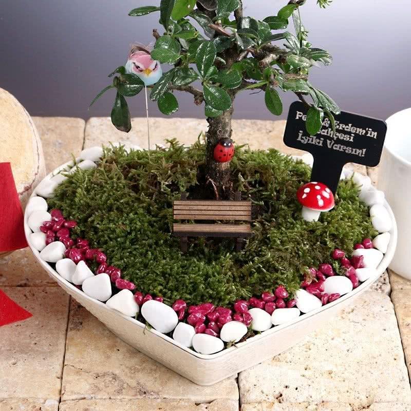 Sevgililere Kalpli Minyatür Bahçe Hediye Sepeti