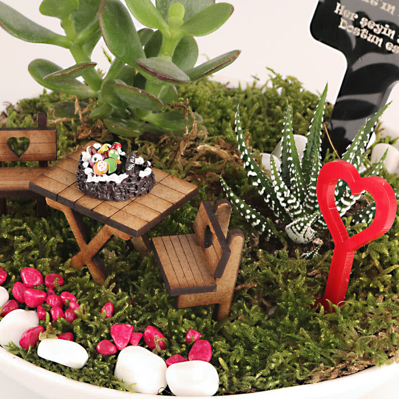 Sevgiliye Doğum Günü Hediyesi Minyatür Bahçe Hediye Sepeti