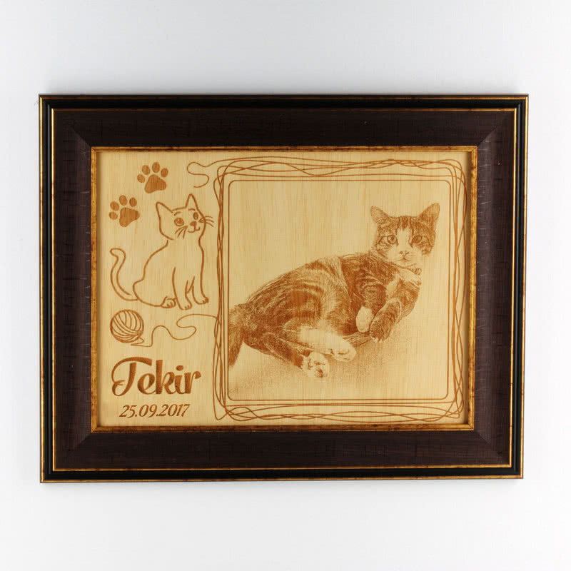 Sevimli Kedinize Özel Çerçeveli Ahşapfoto
