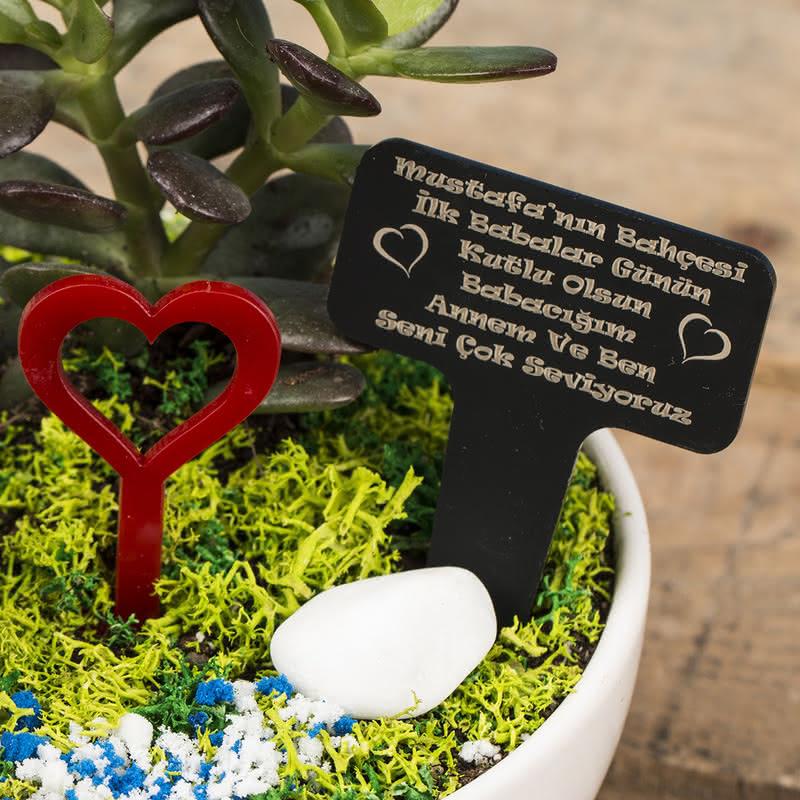 İlk Babalar Günü Hediyesi Minyatür Bahçe