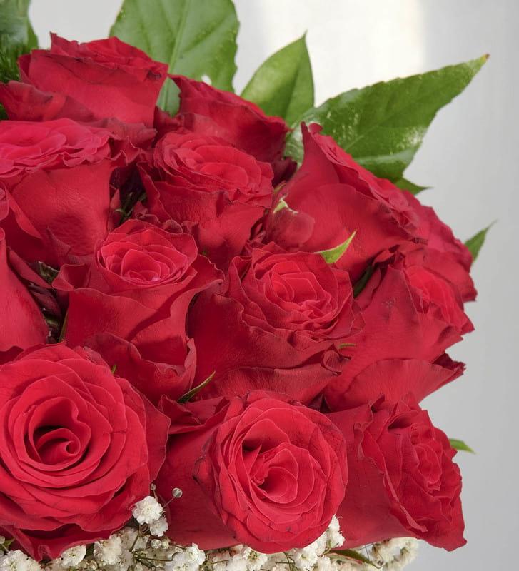 Aşkın En Güzel Hali 20 Kırmızı Güller