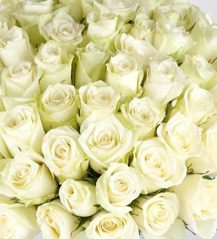 İhtişamlı Vazoda 50 Adet Beyaz Gül