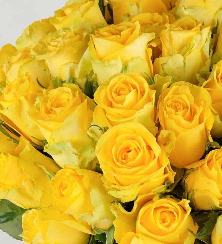 Mutluluğun Formülü Sarı Güller 50 Adet