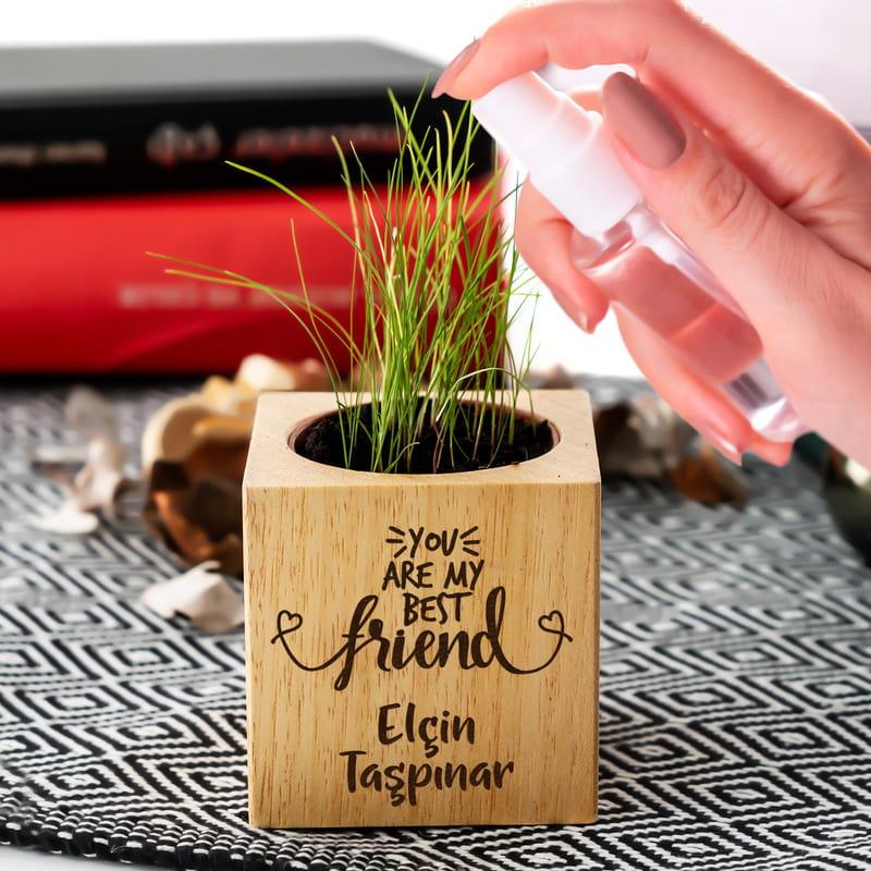 En İyi Arkadaşa Hediye Doğal Tohumlu Naturacube