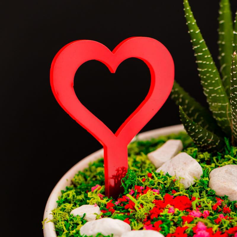 Yıldönümü Hediyesi Romantik Minyatür Bahçe