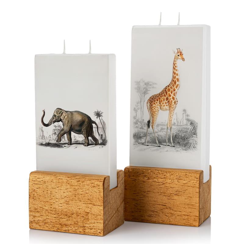 Karakalem Fil ve Zürafa Tasarımlı Mum Seti