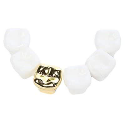 Diş Hekimi Arkadaşa Özel Hediye Diş Magnet