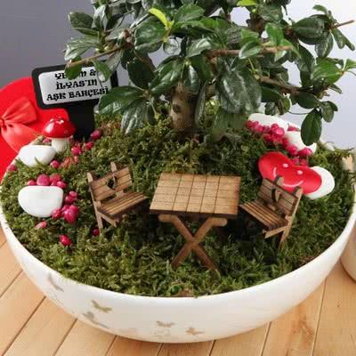 Hediyelik Minyatür Bonsai Bahçesi