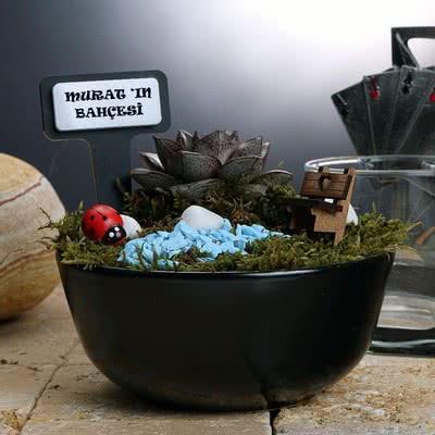 Erkeğe Hediye Özel Minyatür Sukulent Bahçesi