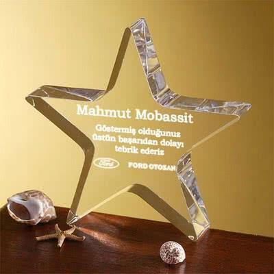 Kurumsal Hediyelik Yıldız Ödülü