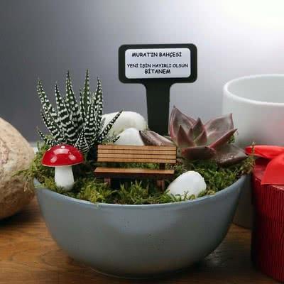 Sevgiliye Ofis Hediyesi Minyatür Sukulent Bahçe