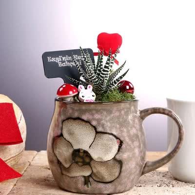 Bayana Hediye Çiçek Desenli Mini Bahçe