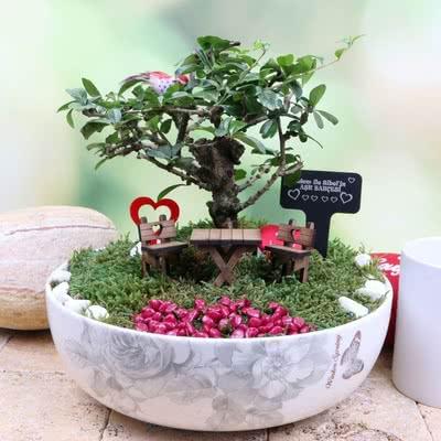 Sevgiliye Düğün Hediyesi Minyatür Bahçe