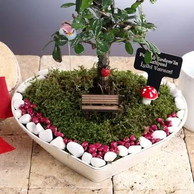 Sevgililere Kalpli Minyatür Bahçe