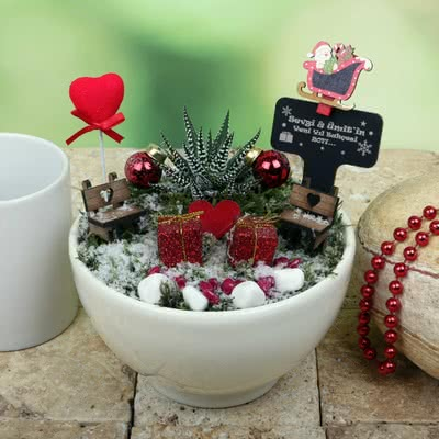 Minyatür Bahçe ile Aşkınızı Yaşatın