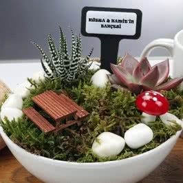 Yeni iş Terfi hediyesi Minyatür Bahçe