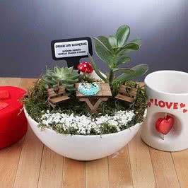 Doğum Günü Hediyesi Pastalı Minyatür Bahçe