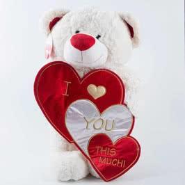 Kalp Tutan Mesajlı Sevimli Peluş Ayı