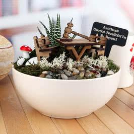 Avukata Hediye Canlı Minyatür Bahçe