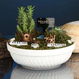 Babalar Gününe Özel Minyatür Bahçe