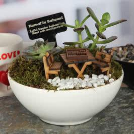 Erkeğe Hediye Tavlalı Minyatür Bahçe