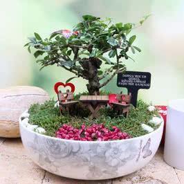 Büyükanneye Hediyelik Özel Canlı Minyatür Bahçe