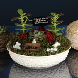 Canım Babama Hediye Minyatür Bahçe
