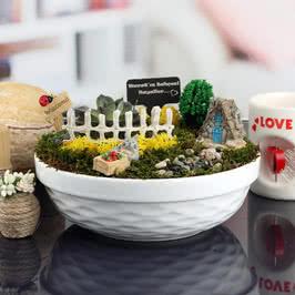Hayal Evi Minyatür Bahçe