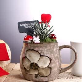 Sevgiliye Hediyelik Kupa Mini Bahçe