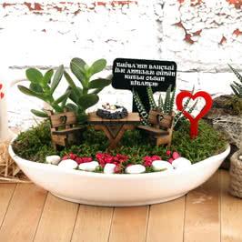 İlk Anneler Günü Hediyesi Minyatür Bitki Bahçesi