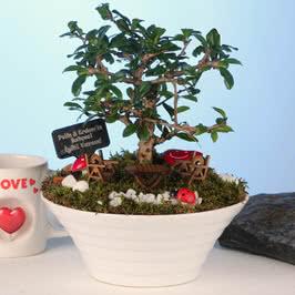 İsme Özel Bonsai Ağaçlı Mini Bahçe
