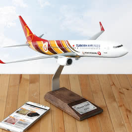 Kişiye Özel Koleksiyon Galatasaray Metal Maket Uçak