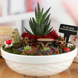 Mutlu Ailelere Minyatür Bahçe