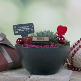 Yılbaşı Hediyesi Minyatür Bahçe