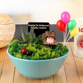 Doğum Günü Hediyesi Balonlu Minyatür Bahçe