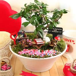 Sevgiliye Hediye Mutlu Çiftler Canlı Minyatür Bahçe